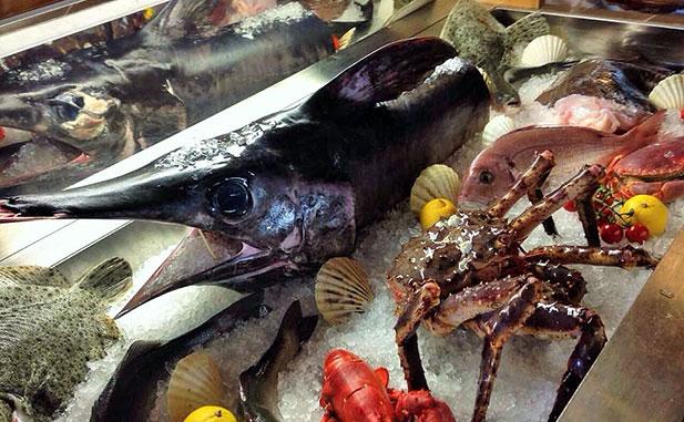 Banco pesce 617 web